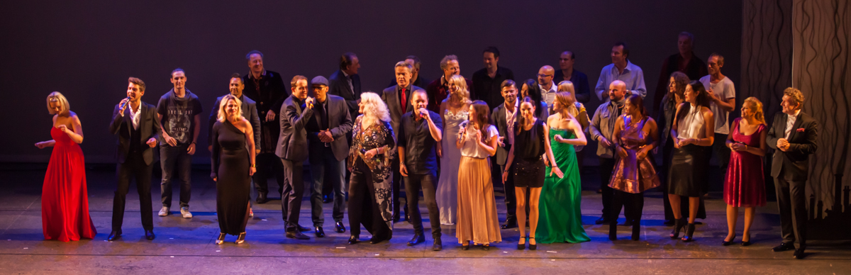 """[:de]Finale bei der Gala """"Wider die Gewalt"""" 2015, Ronacher[:en]Finale of the charity event """"Wider die Gewalt"""" 2015, at Ronacher, Vienna/Austria[:]"""